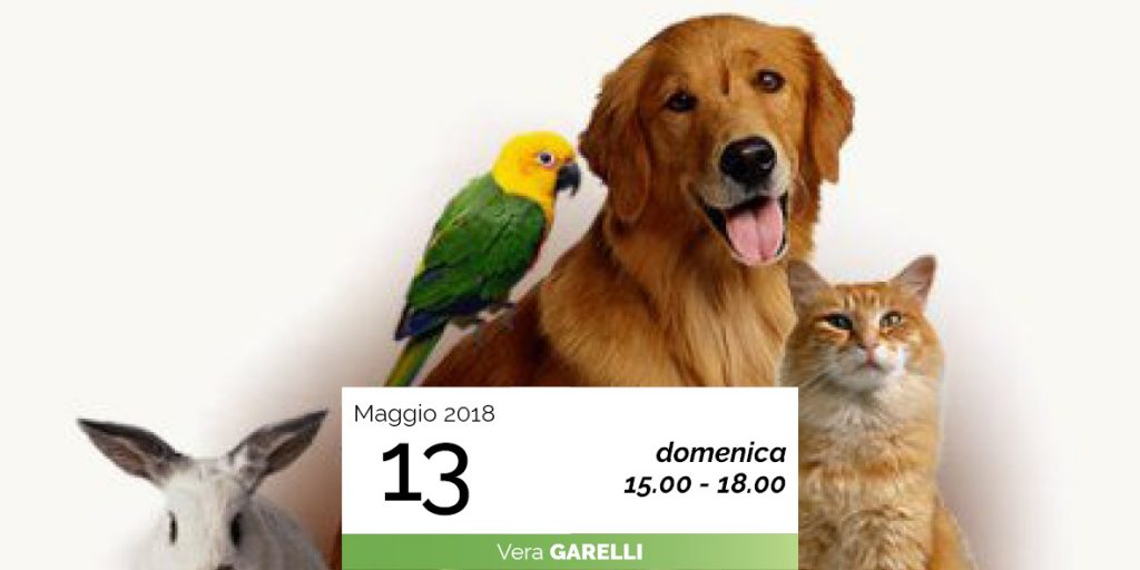 Vera Garelli animali domestici