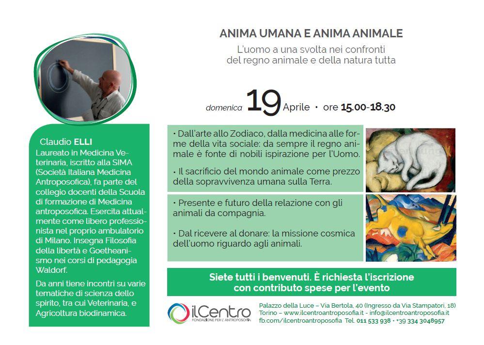 Claudio Elli animali locandina
