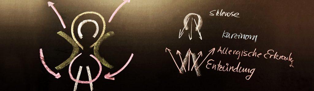 Rudof Steiner disegno alla lavagna Sezione medica, Goetheanum
