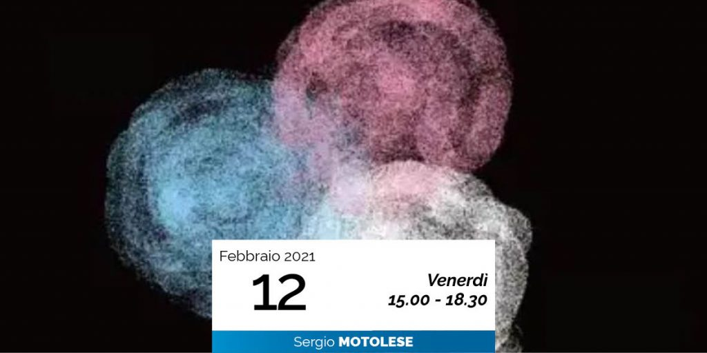 LA SCIENZA SOCIALE DI RUDOLF STEINER con Sergio Motolese 12-2-2021